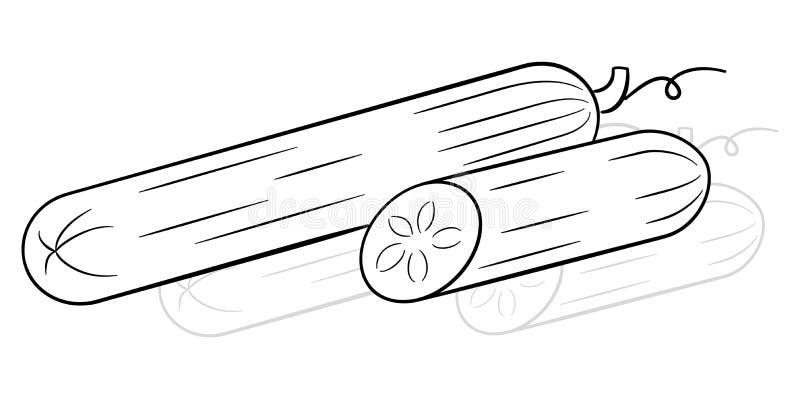 De getrokken komkommer van de beeldverhaalsalade stock illustratie