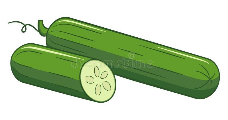De getrokken komkommer van de beeldverhaalsalade vector illustratie