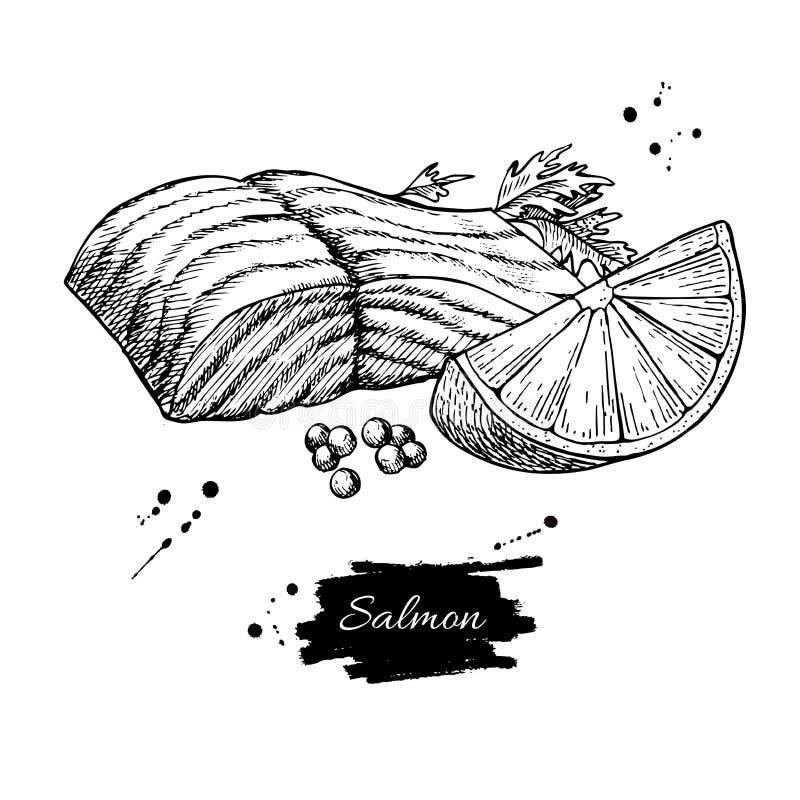 De getrokken vectorillustratie van de zalmfilet hand Gegraveerde stijl uitstekende zeevruchten vector illustratie
