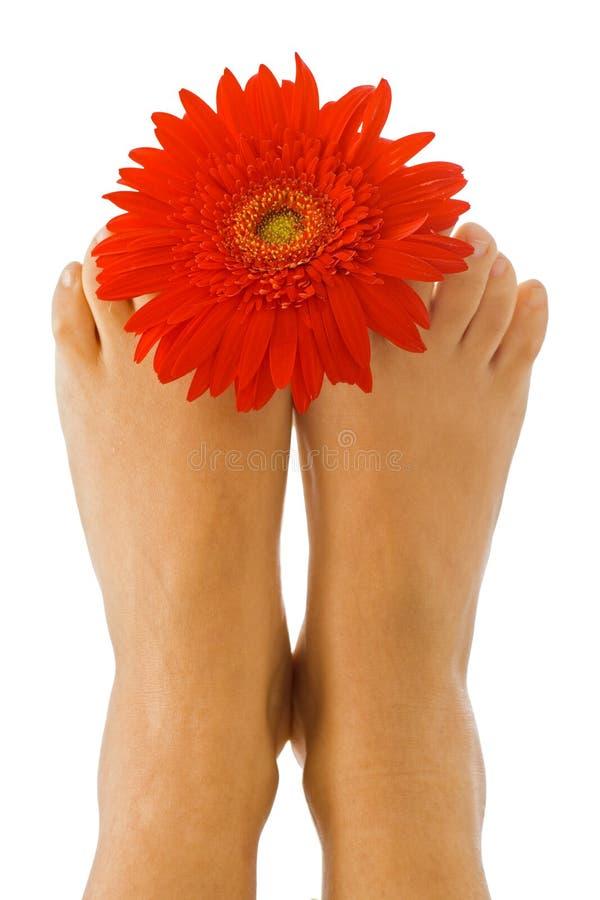 De geur van een schone voet stock afbeelding
