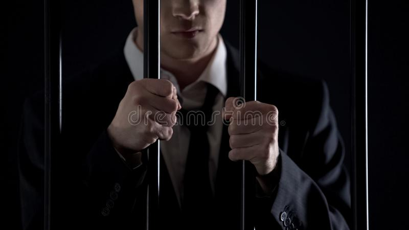 De gevangenisbars van de politicusholding, officieel die mannetje bij het witwassen van geld wordt gearresteerd royalty-vrije stock fotografie