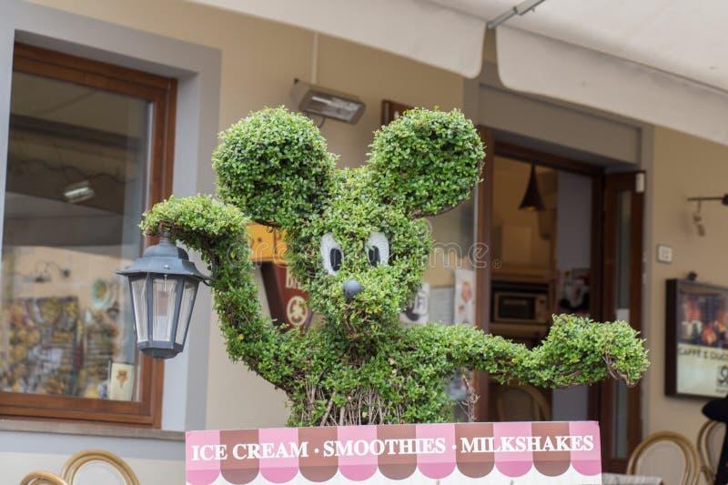De gevormde boom van Mickey Mouse hoofd Boom het In orde maken royalty-vrije stock afbeelding