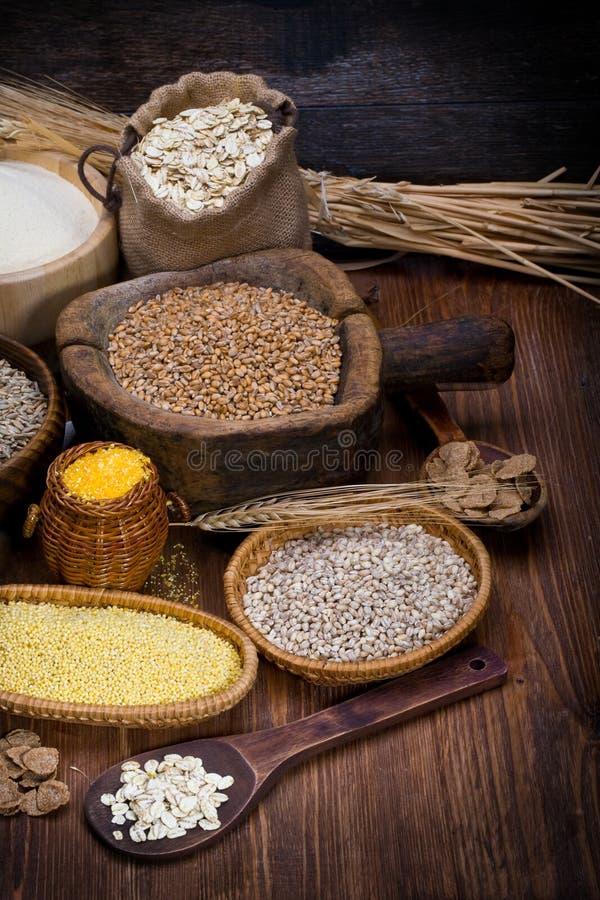 Download De gewassen van Cereale stock afbeelding. Afbeelding bestaande uit haver - 29509315