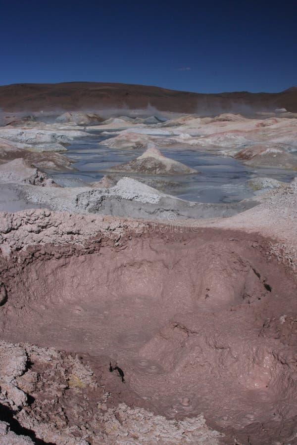 de geyser mananasolenoid arkivbild