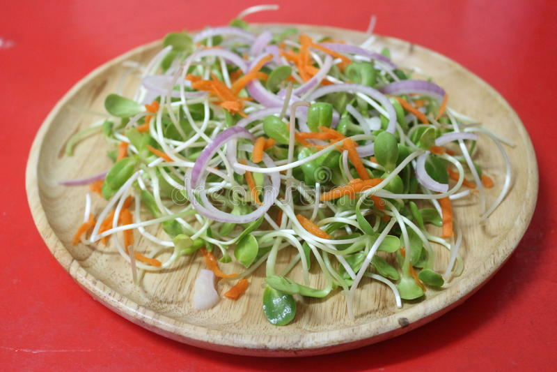 De gezondheid van het saladevoedsel stock afbeeldingen