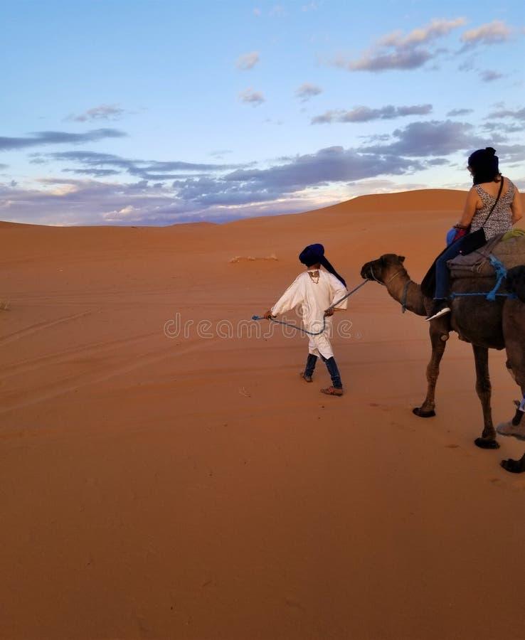 De Gids - Kameeltrek in de Sahara om de Zonsondergang te zien! royalty-vrije stock foto's