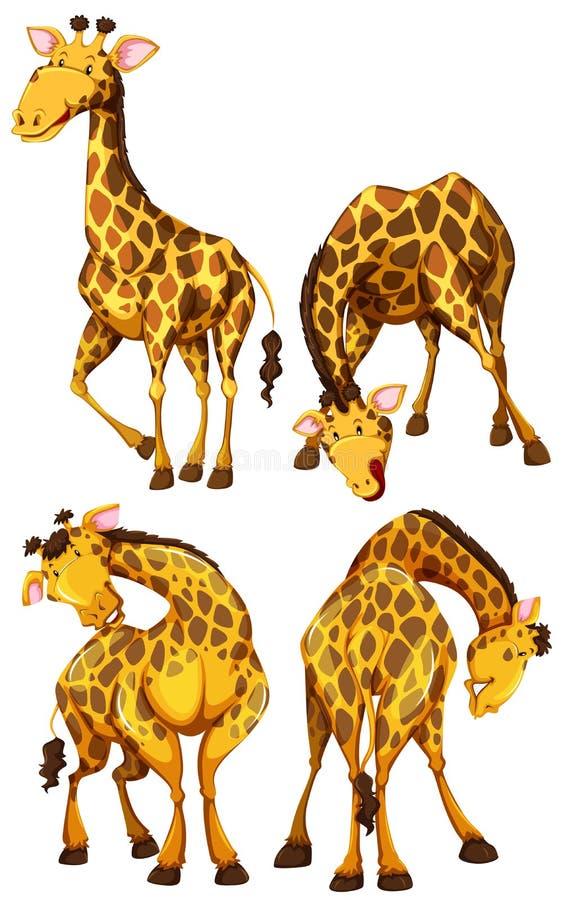 De giraf in verschillende vier stelt vector illustratie