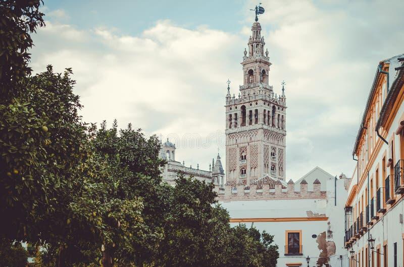 De Giralda-toren achter de bomen stock fotografie
