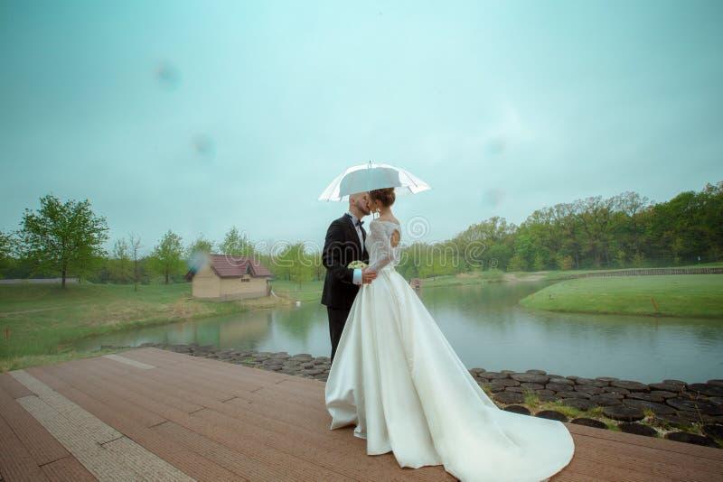 De glamourjongelui merried paar het kussen onder de paraplu royalty-vrije stock fotografie