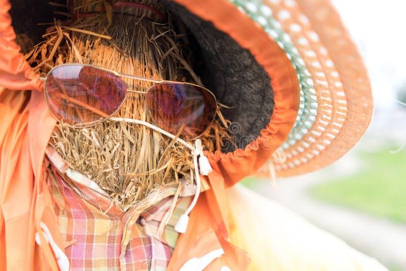 De de glazen en hoed van de vogelverschrikkerslijtage royalty-vrije stock foto
