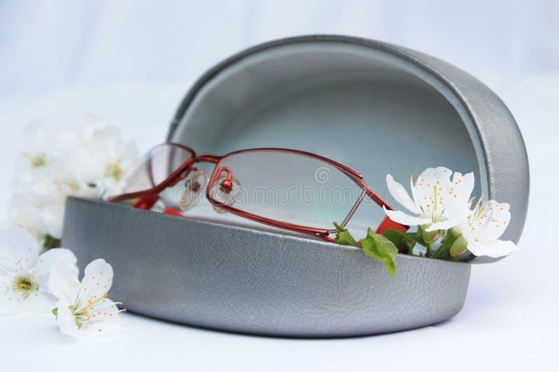 De glazen van het oog met kersen blosson bloemen royalty-vrije stock afbeeldingen