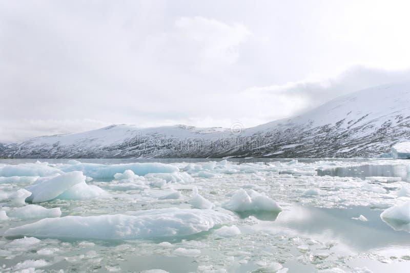 De gletsjer van Jostedalsbreen stock foto's