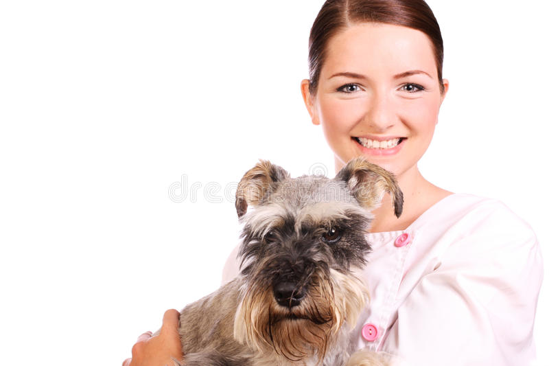 De glimlachende hond van de dierenartsholding royalty-vrije stock fotografie