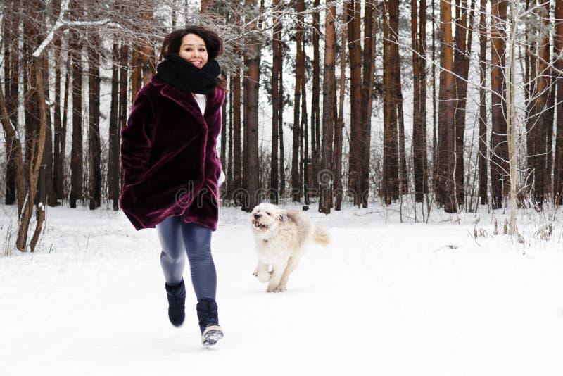 De glimlachende jonge vrouw loopt met haar Zuiden Russische Herder Dog op een achtergrond van de winterbos stock foto