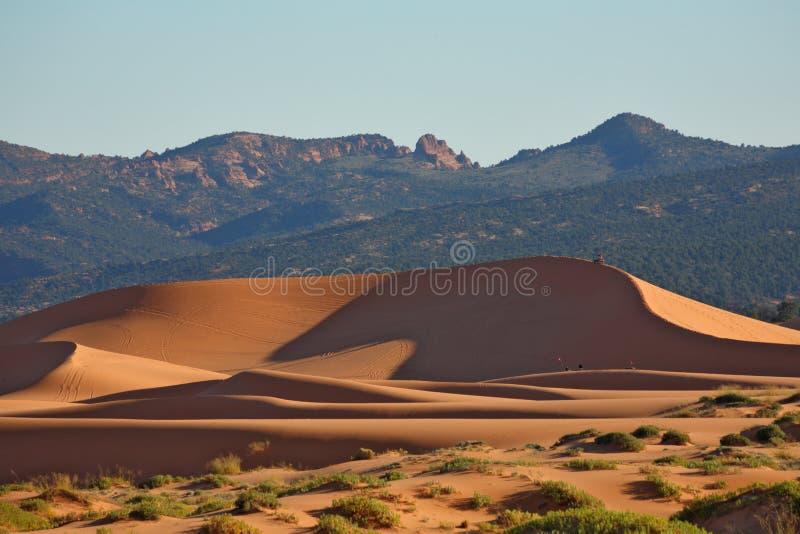 De gloed van het zand in de zon stock foto