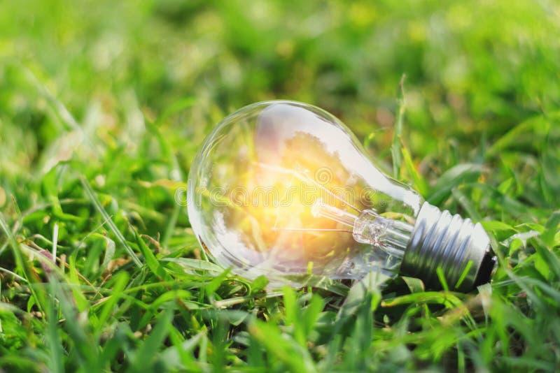 de gloeilamp van concepteneco op groen gras met ONO de macht van de ideebesparing stock afbeelding