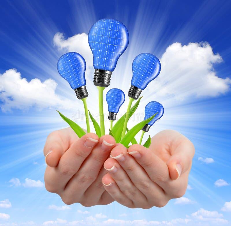 De gloeilampen van de Ecoenergie royalty-vrije stock foto