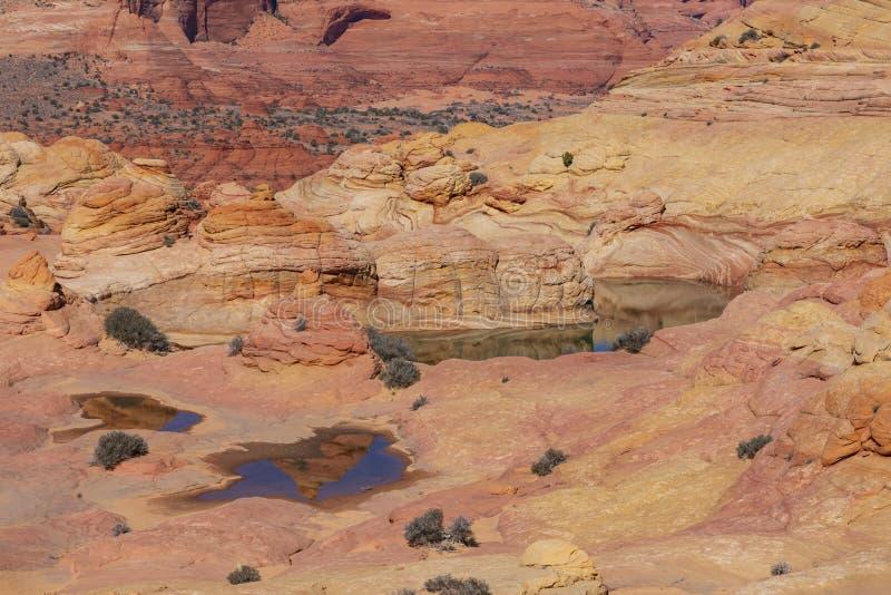 De Golf, Coyotebuttes, Arizona, Verenigde Staten stock afbeelding