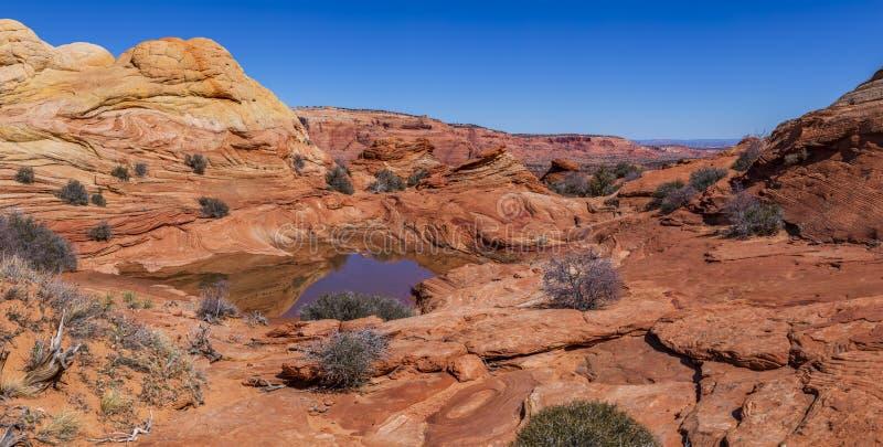 De Golf, Coyotebuttes, Arizona, Verenigde Staten stock fotografie
