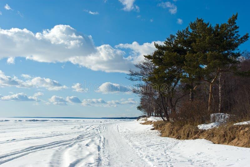 De golf van de kust van Finland in de vroege lente royalty-vrije stock foto's