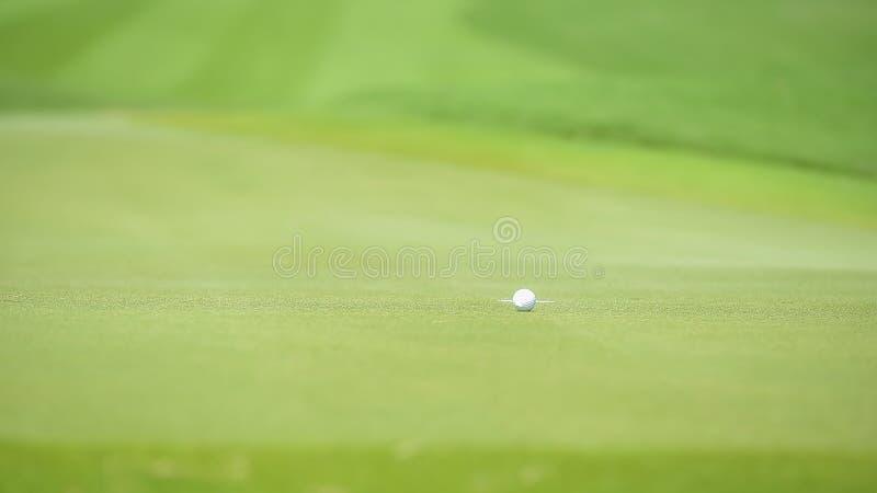 De golfbal zette op groen gras van golfcursus royalty-vrije stock afbeeldingen