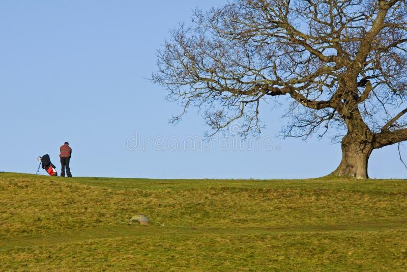 De Golfspeler van de winter stock afbeeldingen