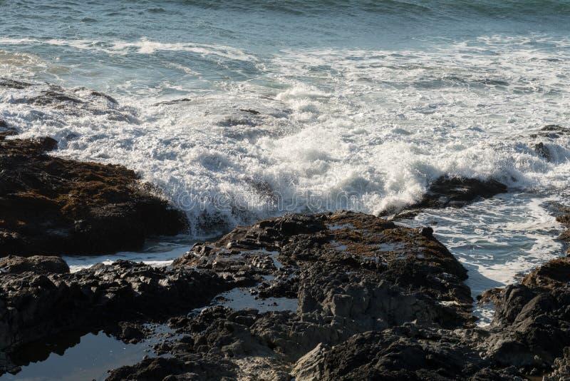 De golven verpletteren op de rotsen van de kust bij Speciaal de Rentegebied van Kaapperpetua waar Thor goed wordt gevestigd stock foto