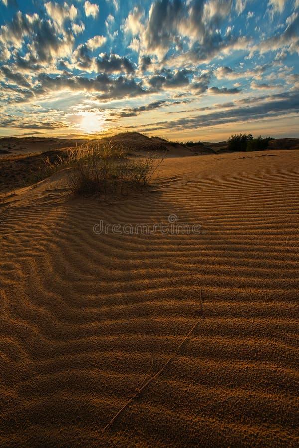 De golvende woestijn van het duinzand bij de zon van de zonsondergangzomer stock afbeelding