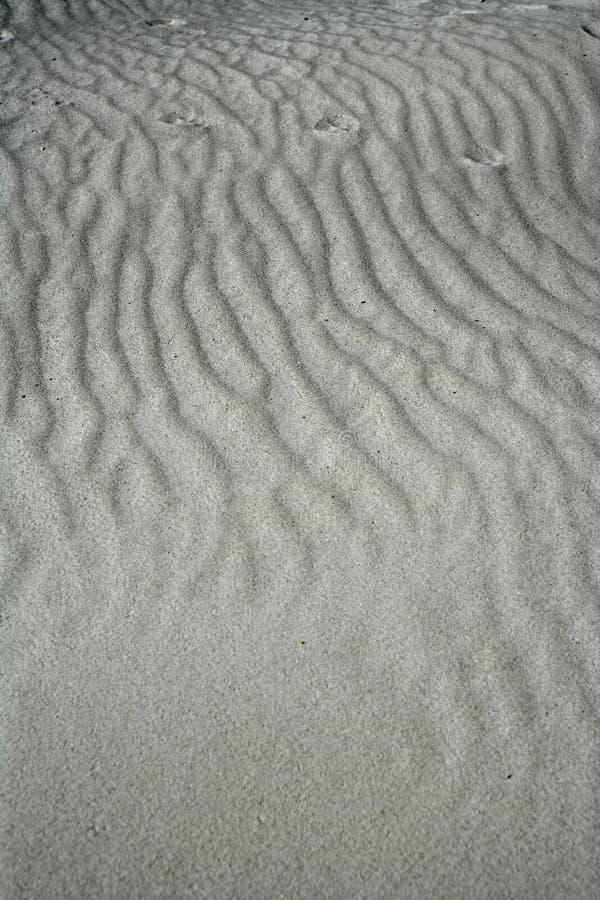 De golventextuur van het zand op wit zand zoals woestijn stock fotografie