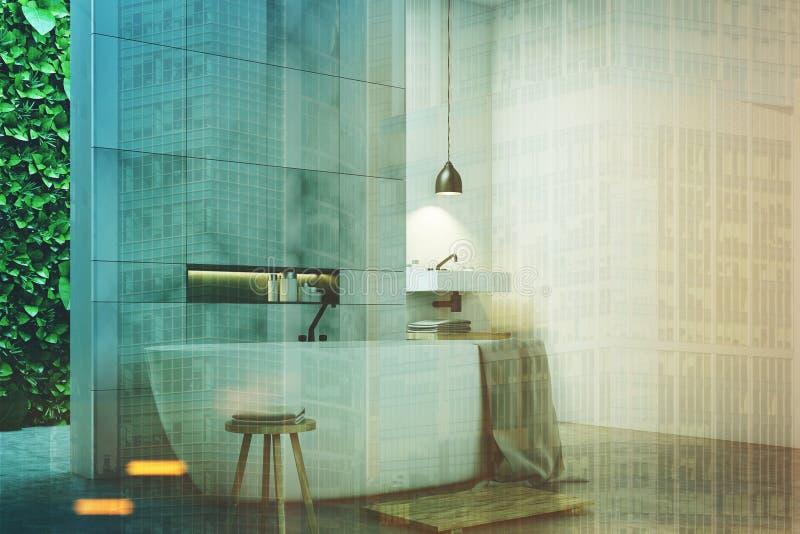 De gootstenen van de Ecobadkamers, marmeren gestemde kant vector illustratie