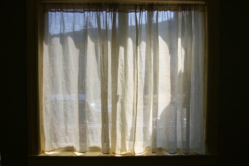 De Gordijnen van het venster stock fotografie