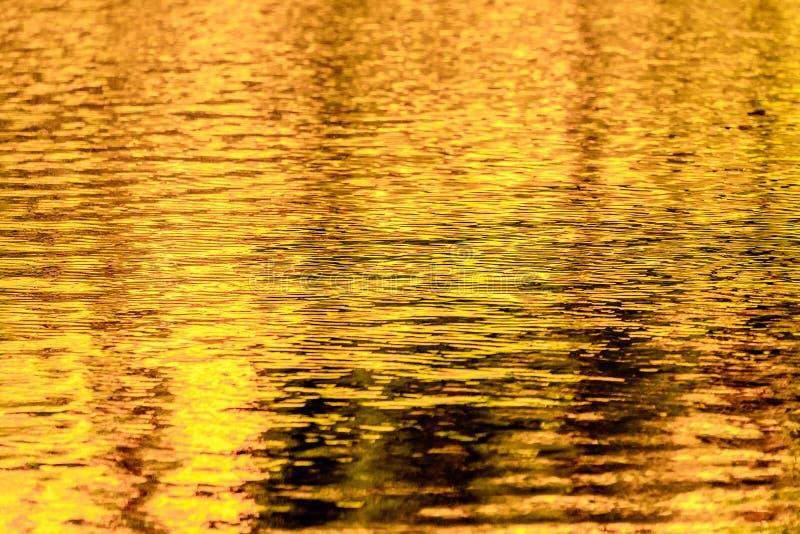 De gouden bezinningen van het de herfstmeer royalty-vrije stock foto's