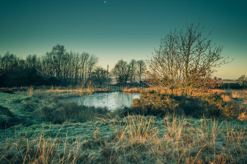De gouden dageraad lichte onderbrekingen op een bevroren vijver op Wetley leggen, Staffordshire vast stock afbeeldingen