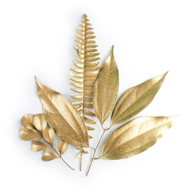 De gouden elementen van het bladontwerp Decoratieelementen voor uitnodiging, huwelijkskaarten, valentijnskaartendag, groetkaarten royalty-vrije stock foto's