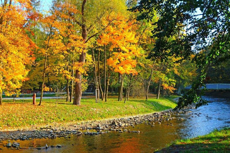 De gouden herfst door de rivier royalty-vrije stock fotografie