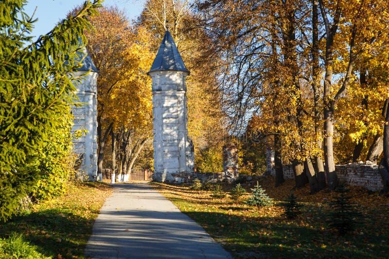 De gouden herfst, gele bomen in zonlicht, underfoot bladeren stock afbeeldingen