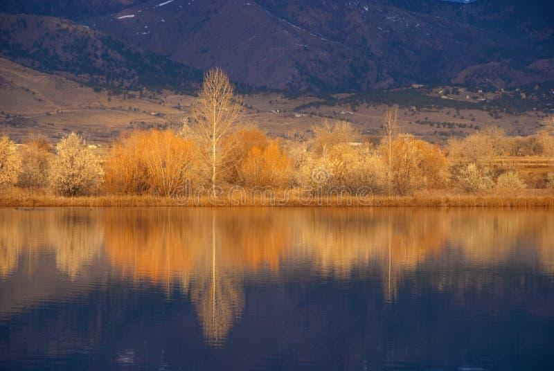 De gouden Rand van het Meer in de Herfst stock foto