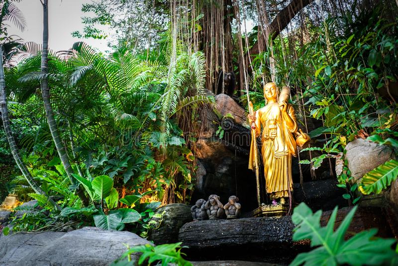 De gouden standbeelden die van aanhangerboedha post op de rots lopen die met installatie en wijnstok arrounding , Gouden Onderste royalty-vrije stock afbeeldingen