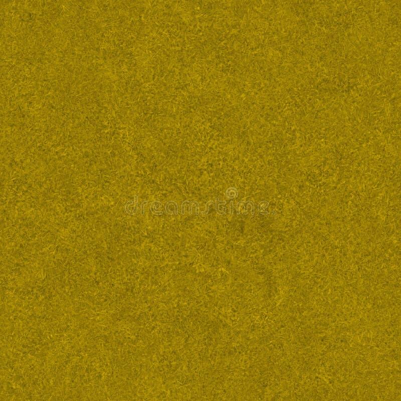 De gouden Textuur van het Gebied van het Gras stock afbeelding