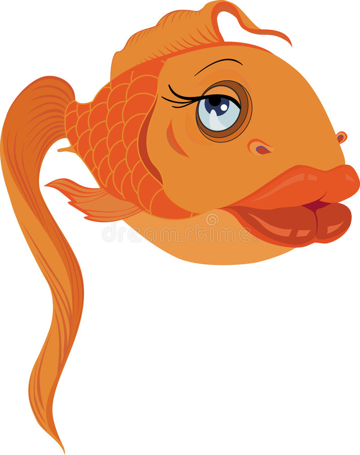 De gouden vissen van de aantrekkingskracht in liefde stock illustratie
