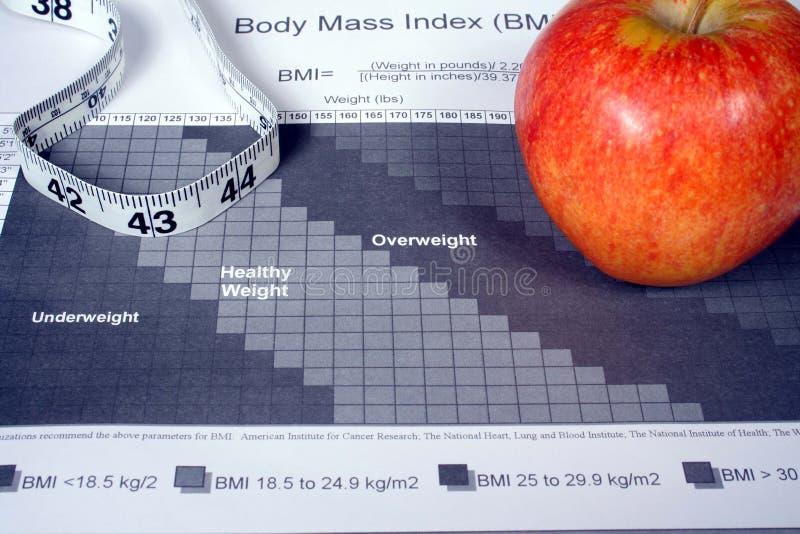 De Grafiek van de Index van de Massa van het lichaam stock afbeelding