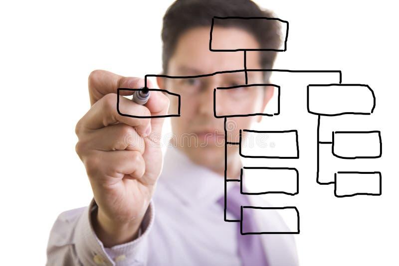 De grafiek van de organisatie