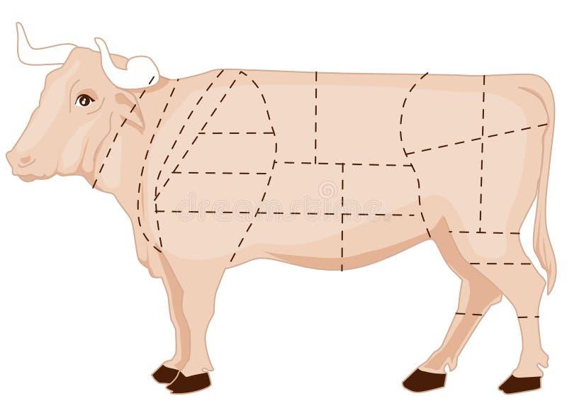 De grafiek van het rundvlees vector illustratie