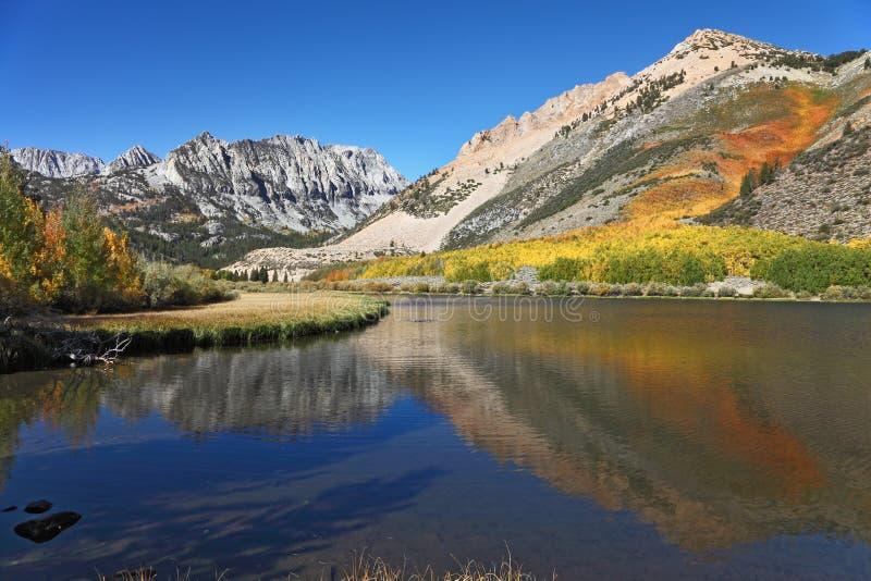 De grandioze veelkleurige herfst stock foto's