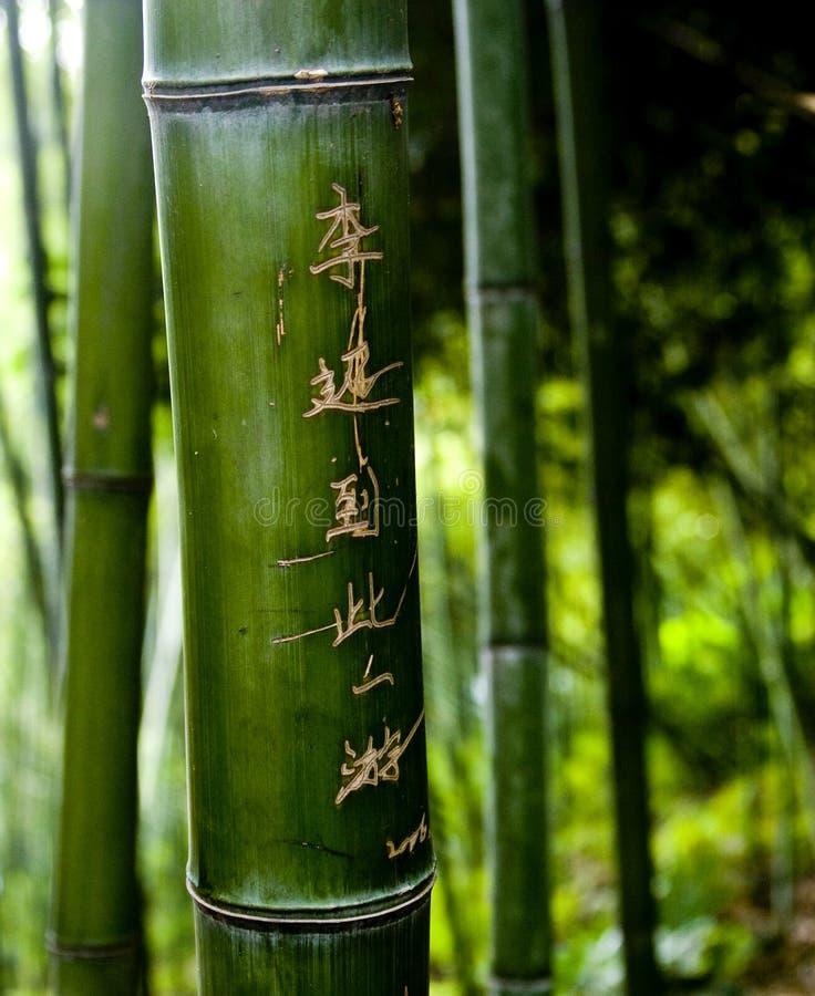 De Gravures van het bamboe stock afbeeldingen