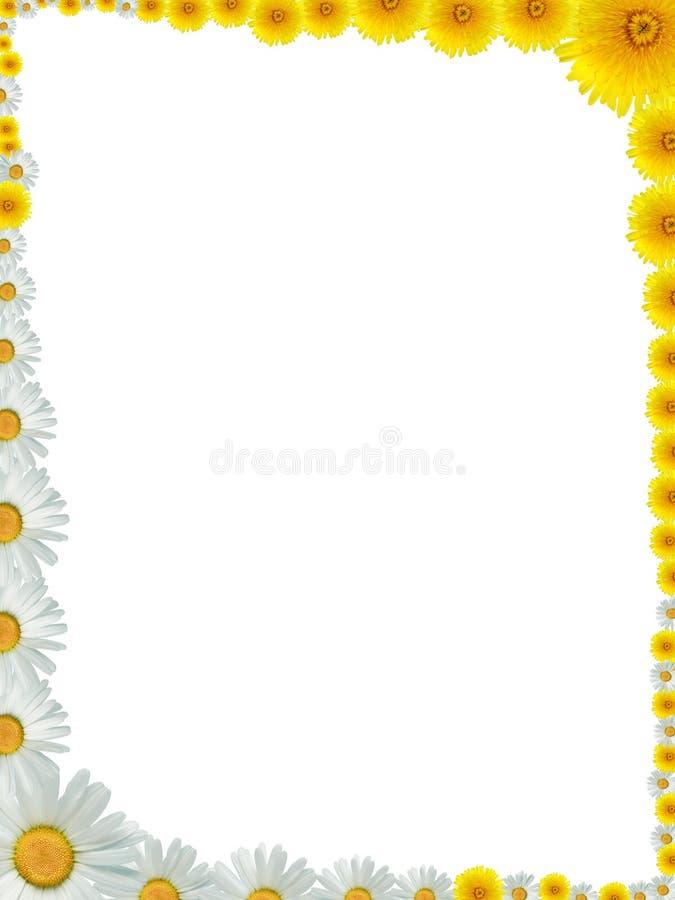 De grens van de bloem stock foto