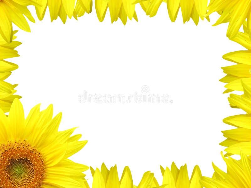 De grens van de bloem royalty-vrije illustratie