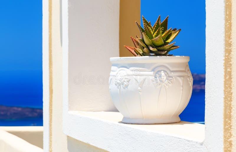 De Griekse architectuur van eilandcycladen met cactus in de veranda met bogen over caldera Middellandse Zee santorinimening royalty-vrije stock afbeeldingen