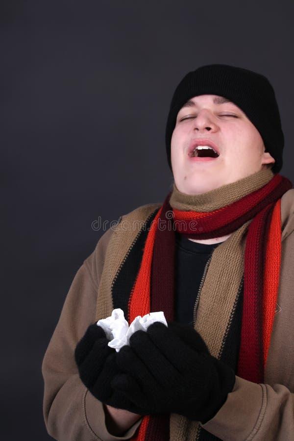 De griep van de winter stock afbeelding