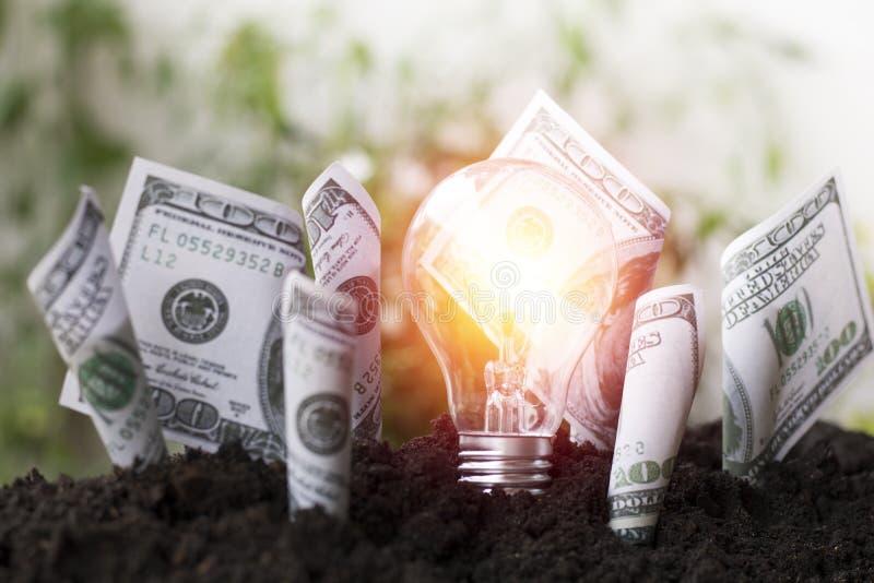 De groei van de dollarsrekening omhoog en gloeilamp op grond, die geld, besparing en investering, concept planten zoals investere royalty-vrije stock foto's
